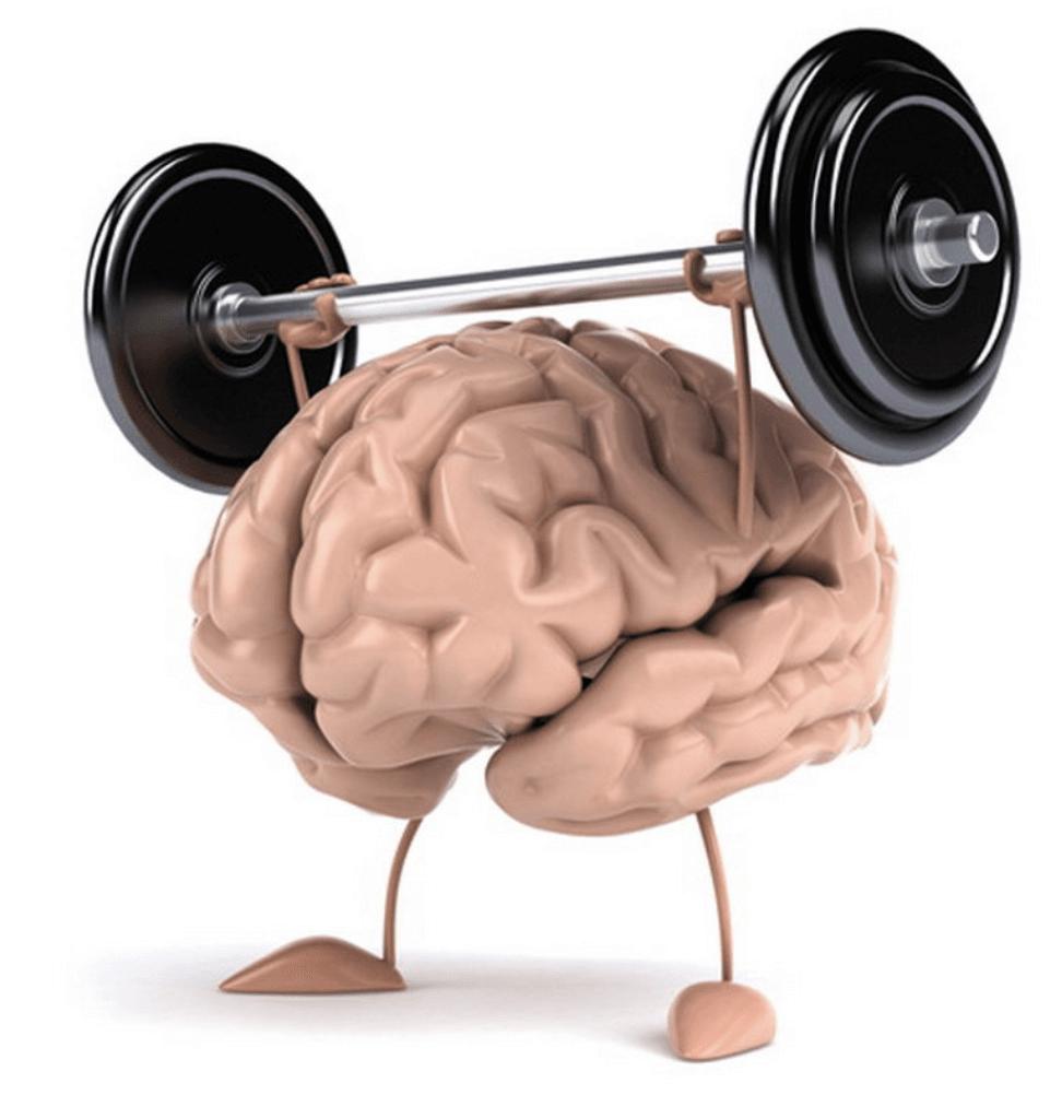 allenare la memoria PAV memoria - Palazzo della Memoria: come usarlo all'Università [Esempi ed Esercizi]